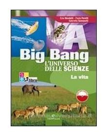 big-bang-abcd-libri-digitali